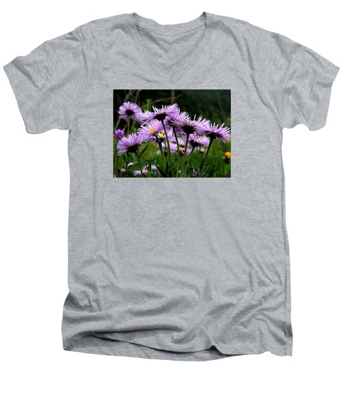 Wild Mountain Asters Men's V-Neck T-Shirt