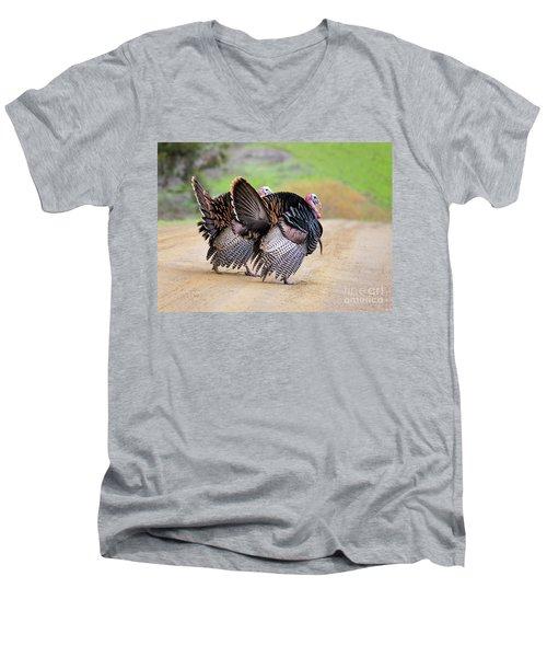 Wild Turkeys Men's V-Neck T-Shirt