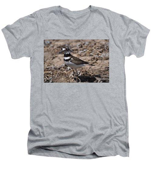 Wildbird Killdeer Mother Men's V-Neck T-Shirt