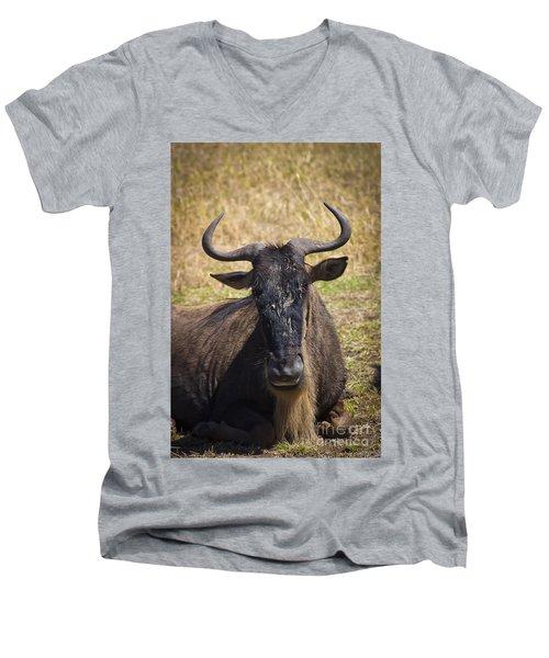 Wildebeest Taking A Break Men's V-Neck T-Shirt by Darcy Michaelchuk