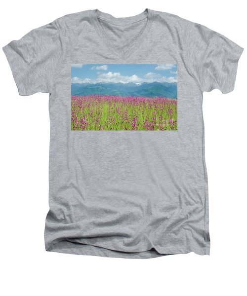 Wildflower Meadows And The Carpathian Mountains, Romania Men's V-Neck T-Shirt