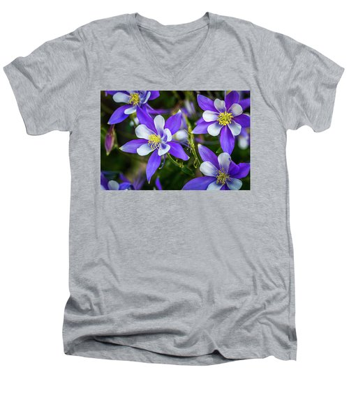 Wildflowers Blue Columbines Men's V-Neck T-Shirt