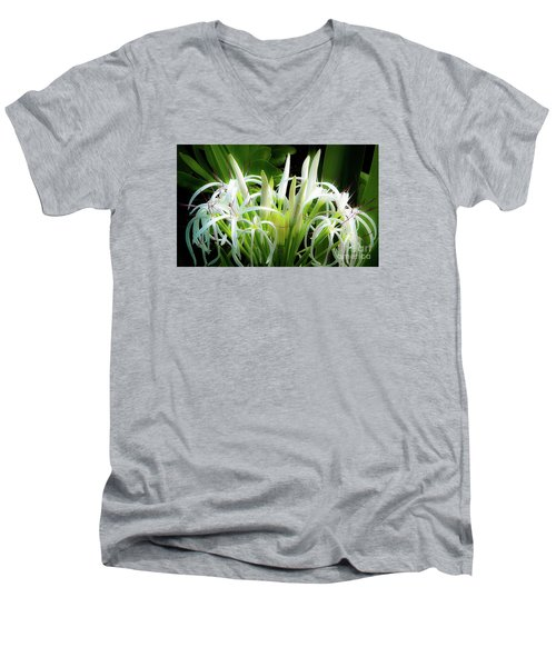 Wildflowers Of Hawaii Men's V-Neck T-Shirt