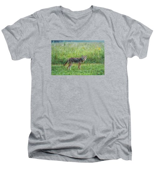 Men's V-Neck T-Shirt featuring the photograph Wiley by Jessica Brawley