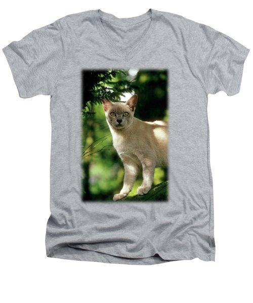 Wilham Men's V-Neck T-Shirt