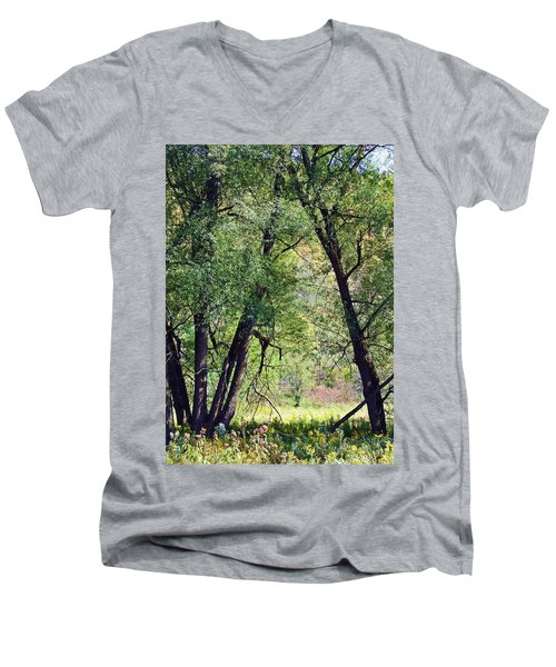 Willow Cathedral Men's V-Neck T-Shirt