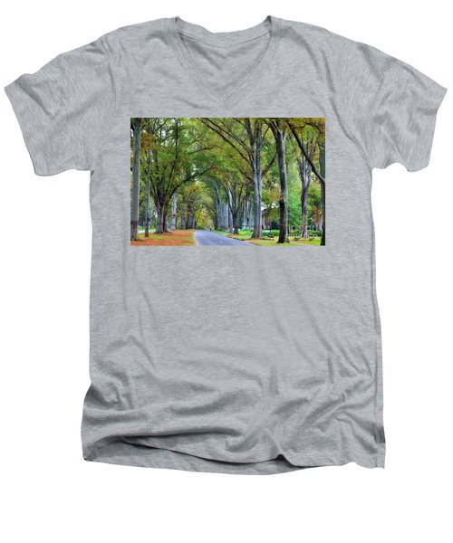 Willow Oak Trees Men's V-Neck T-Shirt