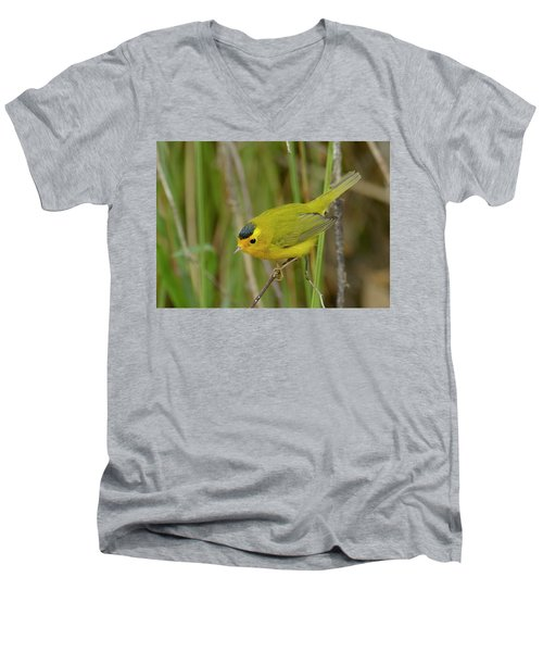 Men's V-Neck T-Shirt featuring the photograph Wilson's Warbler by Doug Herr