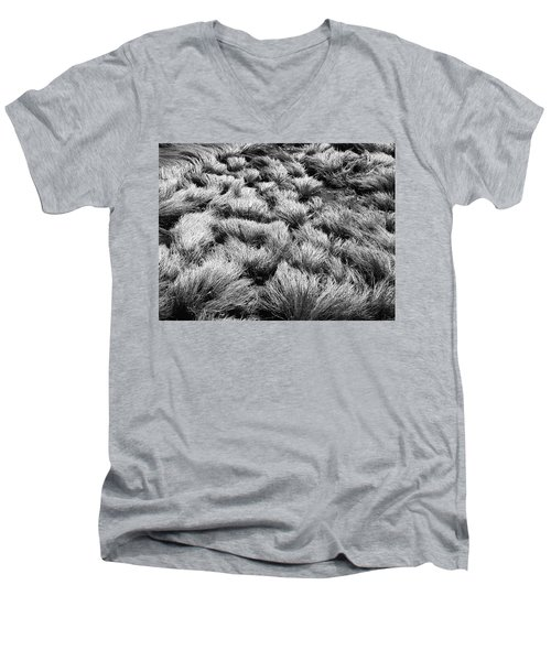 Windblown Grass Men's V-Neck T-Shirt