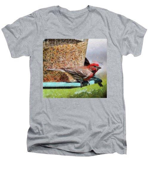Windsor House Finch Men's V-Neck T-Shirt