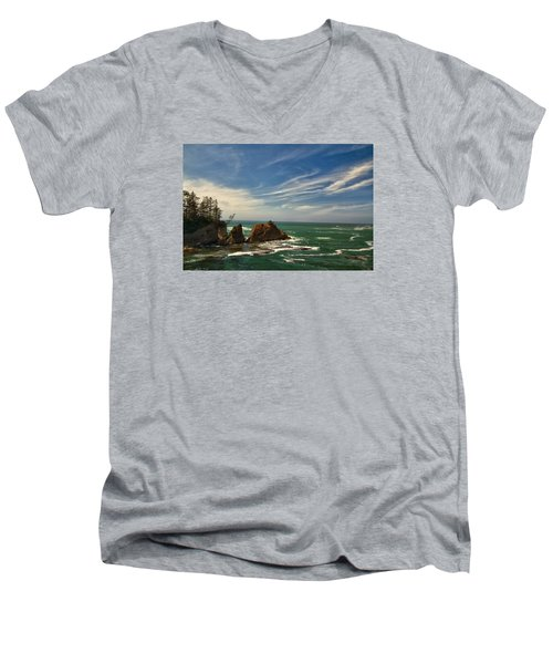 Windswept Day Men's V-Neck T-Shirt