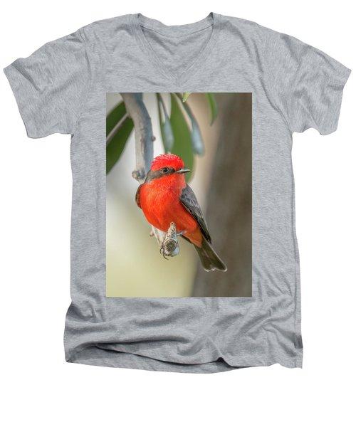 Winged Zorro Men's V-Neck T-Shirt