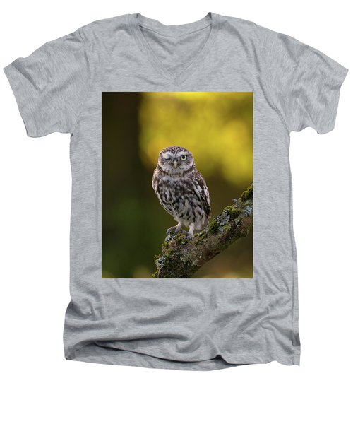 Winking Little Owl Men's V-Neck T-Shirt