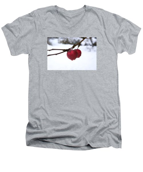 Winter Apples Men's V-Neck T-Shirt by Ellery Russell