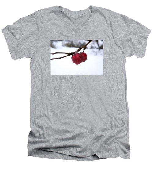Winter Apples Men's V-Neck T-Shirt