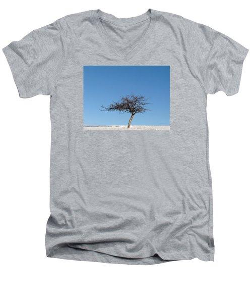 Winter At The Crabapple Tree Men's V-Neck T-Shirt