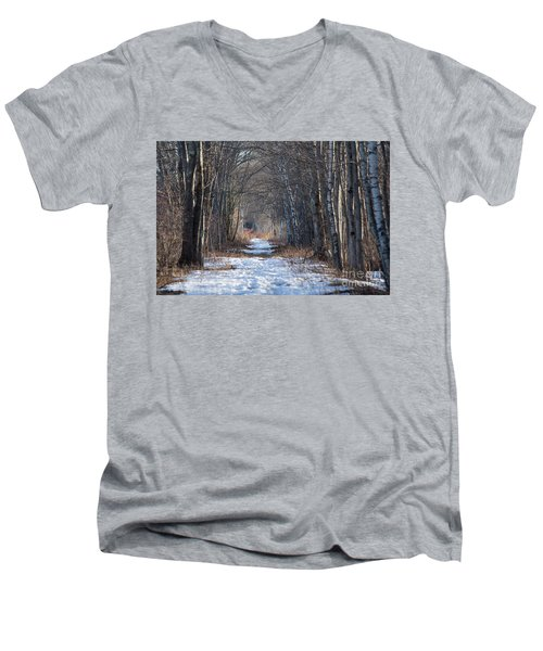 Winter Bliss Men's V-Neck T-Shirt
