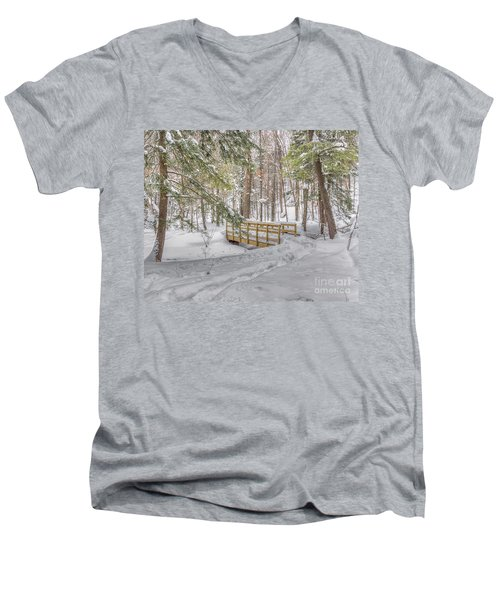 Winter Bridge Men's V-Neck T-Shirt