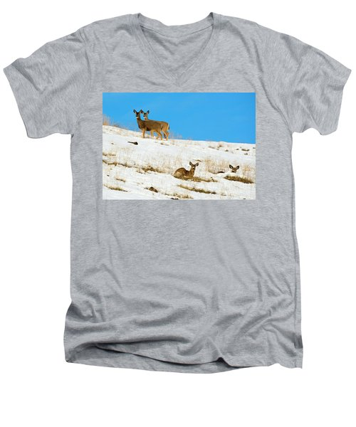 Men's V-Neck T-Shirt featuring the photograph Winter Deer by Mike Dawson