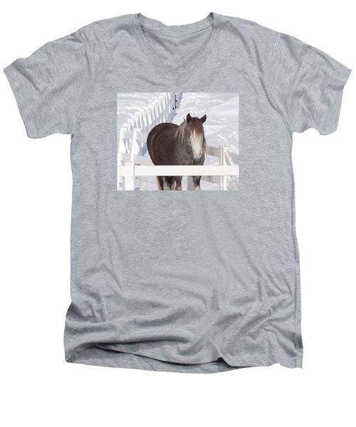 Winter Horse Men's V-Neck T-Shirt