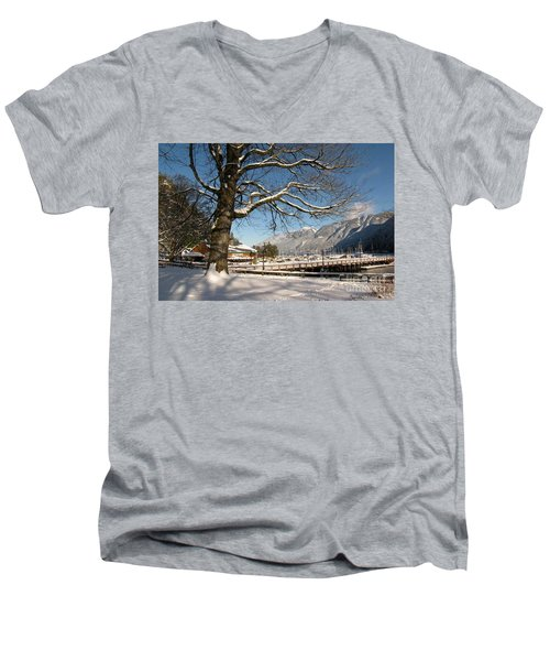 Winter Horseshoe Men's V-Neck T-Shirt