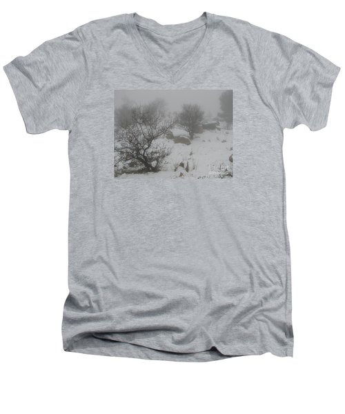 Men's V-Neck T-Shirt featuring the photograph Winter In Israel by Annemeet Hasidi- van der Leij