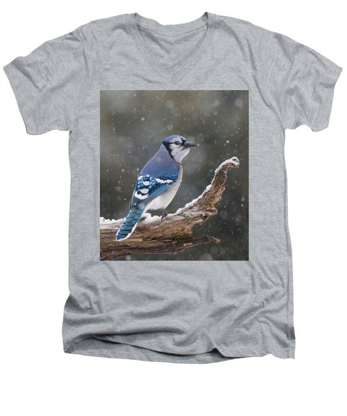 Men's V-Neck T-Shirt featuring the photograph Winter Jay by Mircea Costina Photography