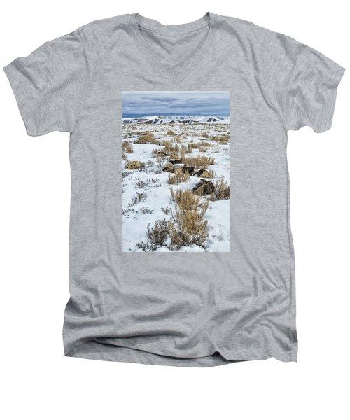 Winter Light In The High Desert Men's V-Neck T-Shirt