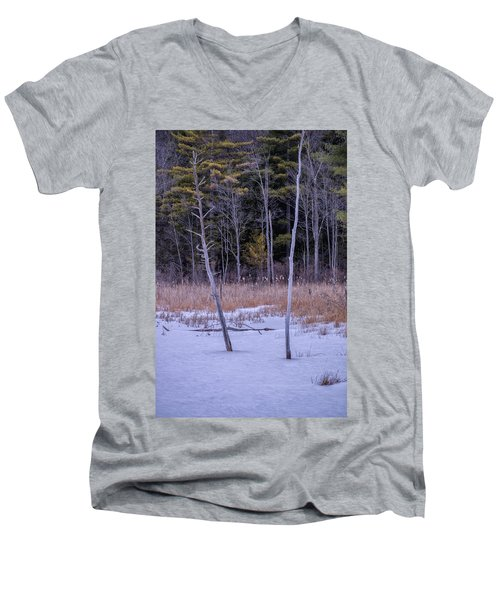 Winter Marsh And Trees Men's V-Neck T-Shirt