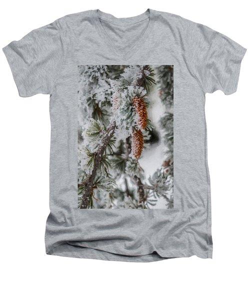 Winter Pine Cones Men's V-Neck T-Shirt