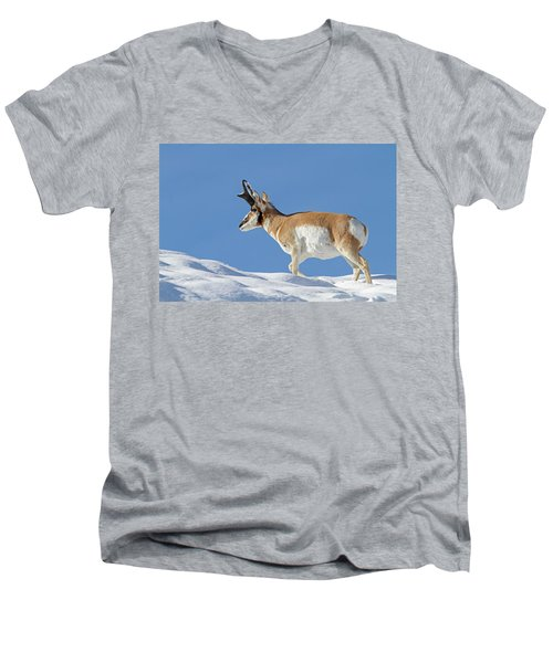 Winter Pronghorn Buck Men's V-Neck T-Shirt
