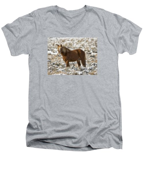Winter Stallion Men's V-Neck T-Shirt