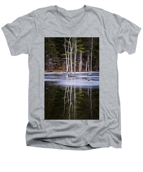Winter Thaw Relections Men's V-Neck T-Shirt
