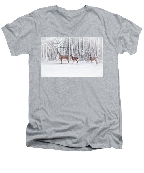 Winter Visits Men's V-Neck T-Shirt by Karol Livote