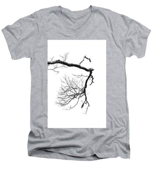 Men's V-Neck T-Shirt featuring the photograph Wintered Over by Skip Willits