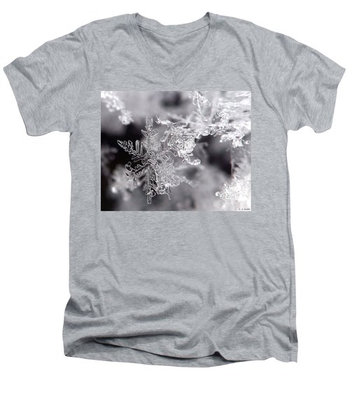 Winter's Beauty Men's V-Neck T-Shirt by Lauren Radke