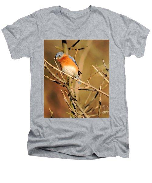 Winter's Bluebird  Men's V-Neck T-Shirt