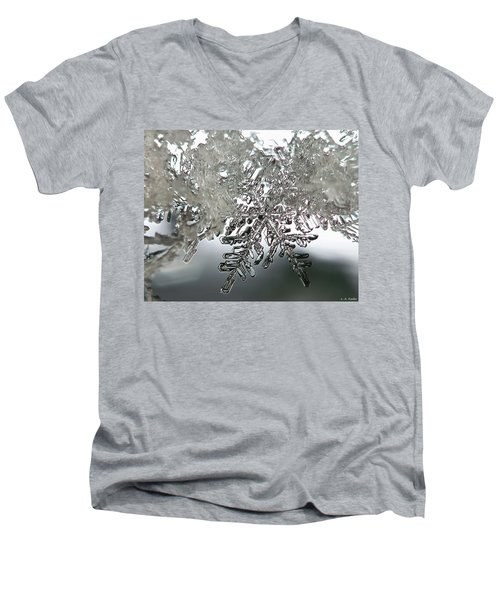 Winter's Glory Men's V-Neck T-Shirt by Lauren Radke