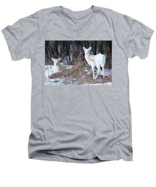 Wintery White Men's V-Neck T-Shirt by Brook Burling