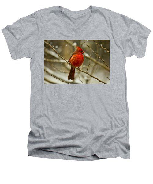 Wintry Cardinal Men's V-Neck T-Shirt