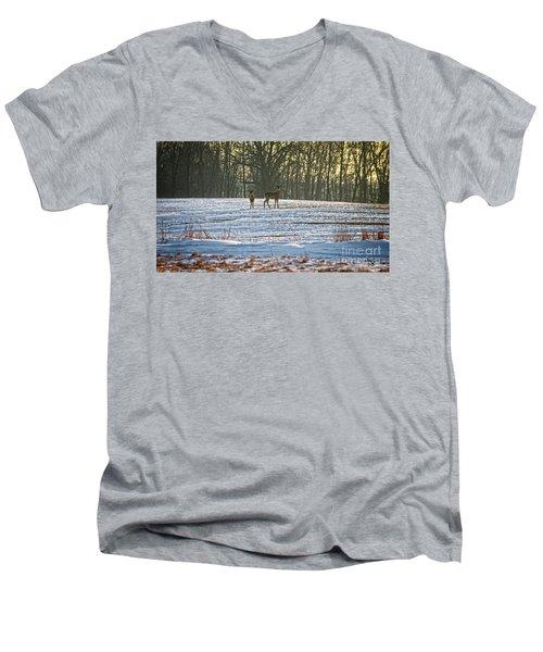 Wisconsin Whitetail Deer Men's V-Neck T-Shirt