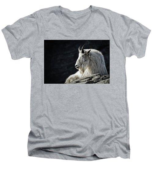 Wisdom From Up High Men's V-Neck T-Shirt by Brad Allen Fine Art