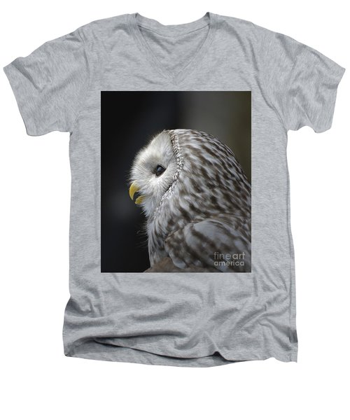 Wise Old Owl Men's V-Neck T-Shirt by Kathy Baccari