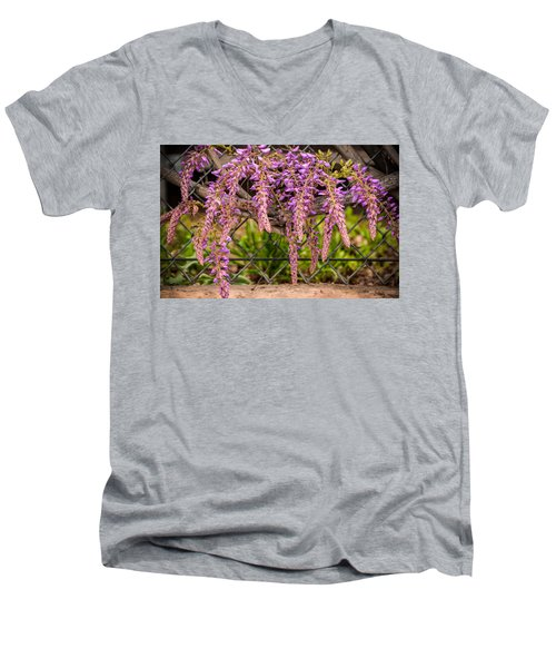 Wisteria Blooming Men's V-Neck T-Shirt