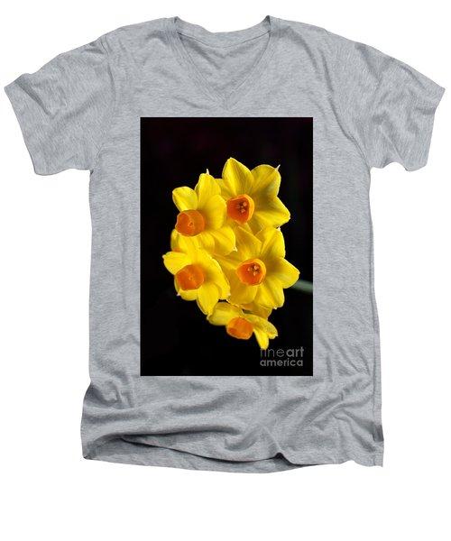 Wonderful Jonquils Men's V-Neck T-Shirt