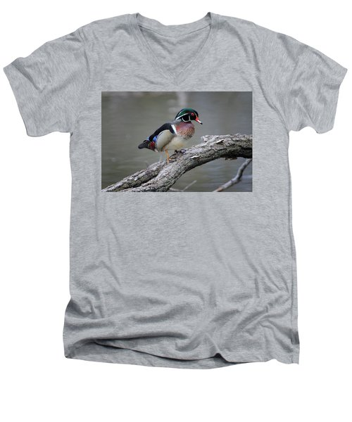 Wood Duck Drake Men's V-Neck T-Shirt by Gary Hall