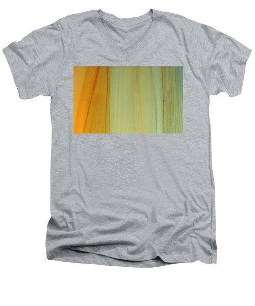 Wood Stain Men's V-Neck T-Shirt