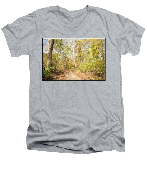 Woodland Path, Autumn, Montgomery County, Pennsylvania Men's V-Neck T-Shirt by A Gurmankin