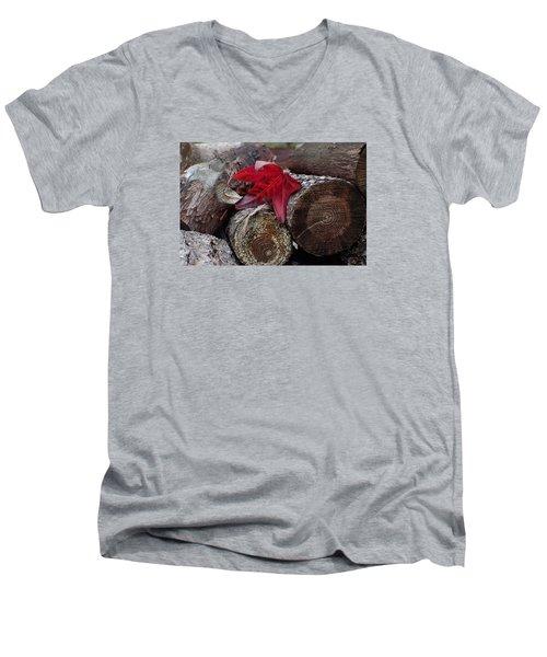 Woodpile Beauty Men's V-Neck T-Shirt