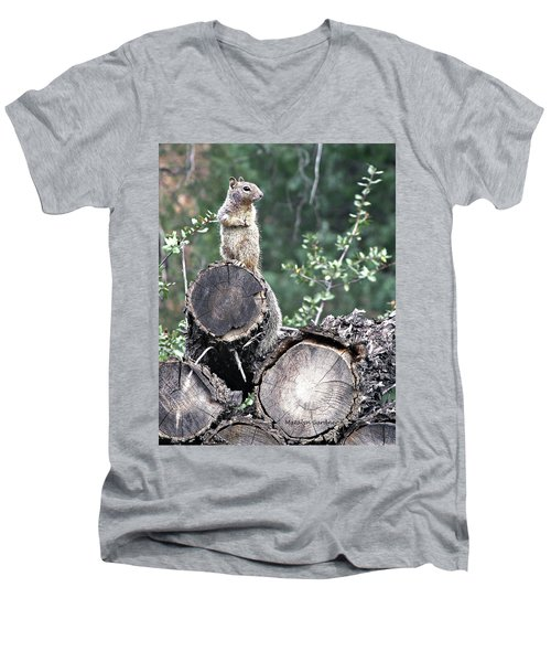 Woodpile Squirrel Men's V-Neck T-Shirt